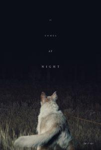 """Poster de la película """"Llega de noche"""""""