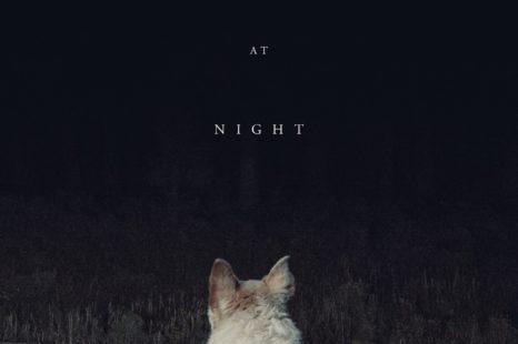 Llega de noche